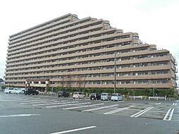 ライオンズガーデンシティ成田[4階]の外観