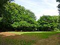 多摩美公園