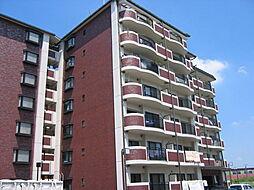 センチュリーアスカ8[4階]の外観