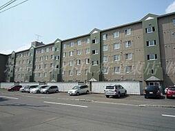 グランベルサ[5階]の外観