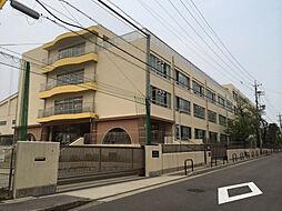 富士見台小学校 徒歩5分(350m)