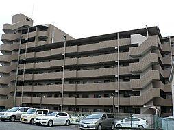 静岡県三島市加茂川町の賃貸マンションの外観