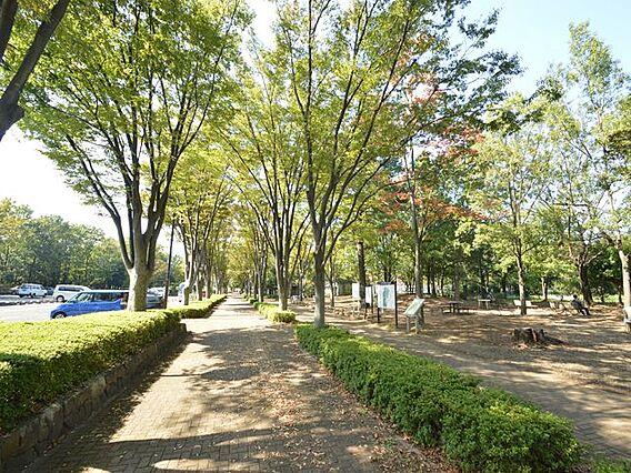 ◆府中の森公園...