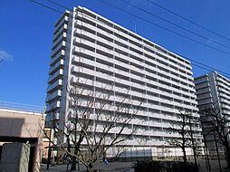 松山市辰巳町3181番地1