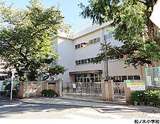 松ノ木小学校