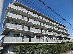 愛知県安城市横山町寺田の賃貸マンションの外観