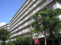 今津浜パークタウン12号(UR)[603号室]の外観