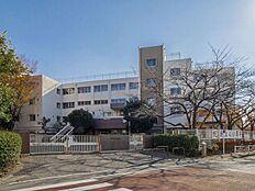 小学校 1440m 府中市立南白糸台小学校