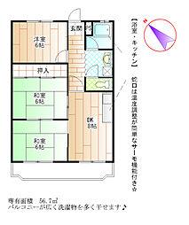 愛知県岡崎市矢作町の賃貸マンションの間取り