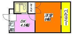 セジュール・八戸ノ里 203号室[2階]の間取り