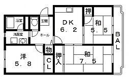 桐朋ハイツ[305号室号室]の間取り