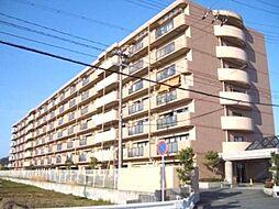 滋賀県大津市茶が崎の賃貸マンションの外観