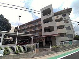 兵庫県西宮市獅子ケ口町の賃貸マンションの間取り