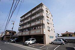 フレクション松山東石井[405 号室号室]の外観