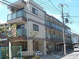 夙川ハイツAIOI[303号室]の外観