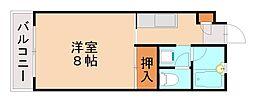 福岡県福岡市城南区西片江1丁目の賃貸マンションの間取り