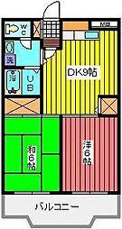 埼玉県川口市大字石神の賃貸マンションの間取り