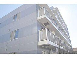 白樺マンション[1階]の外観