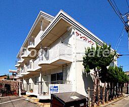 徳島県徳島市住吉1丁目の賃貸マンションの外観