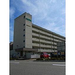 新潟昭和ビル駅南[2階]の外観