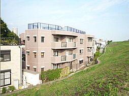 埼玉県川口市飯原町の賃貸マンションの外観