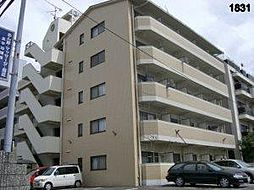 オクトワール松山土居田西館[408 号室号室]の外観
