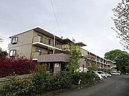 神奈川県横浜市瀬谷区上瀬谷町の賃貸マンションの外観