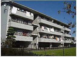 メゾンコダマII[2階]の外観