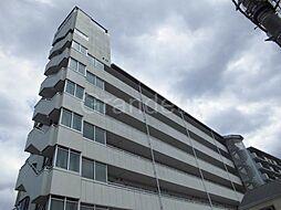 白樺ハイツ城東[4階]の外観