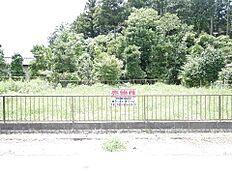 現地土地写真です。