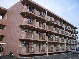 宮崎県宮崎市学園木花台桜2丁目の賃貸マンションの外観