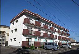 宮崎県宮崎市清武町正手1丁目の賃貸マンションの外観