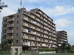 東急ドエル・アルス津田沼東[8階]の外観