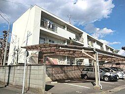 埼玉県さいたま市浦和区領家7丁目の賃貸マンションの外観