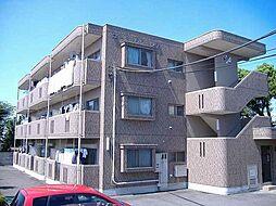 栃木県栃木市泉町の賃貸マンションの外観