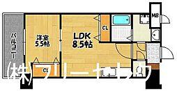 ロイヤル天神東[13階]の間取り