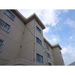 桜ケ丘ハイツ[103号室]の外観