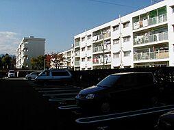 緑ヶ丘団地[4204-418号室]の外観