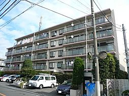 メゾン富士見台[305号室号室]の外観