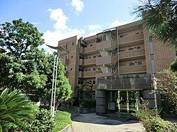 ティエラ武庫之荘[1階]の外観