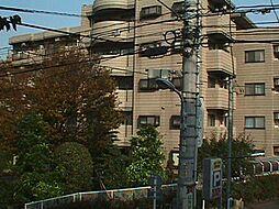 蒲田モリコーポ[308号室]の外観