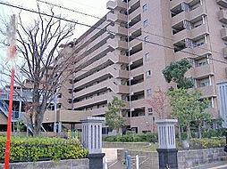 堺市西区上野芝町2丁
