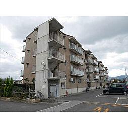 カーサNAKAMURA[4階]の外観