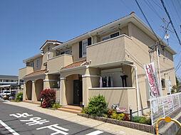 南海線 樽井駅 徒歩20分の賃貸アパート
