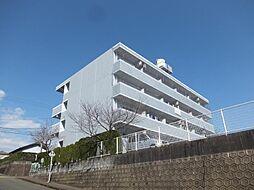 サンライズカワサキA[403号室]の外観