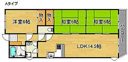 3LDKマンション[5階]の間取り
