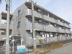 新潟県新潟市江南区亀田向陽2丁目の賃貸マンションの外観