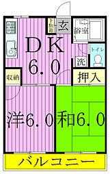 千葉県松戸市緑ケ丘1丁目の賃貸マンションの間取り