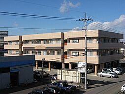 栃木県宇都宮市中今泉3の賃貸マンションの外観