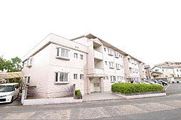 福岡県福岡市南区中尾2丁目の賃貸マンションの外観